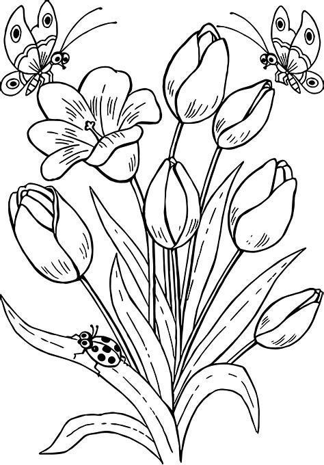 Flowers Drawings Inspiration Resultado De Imagen De Drawings Of Flowers And Butterflies Flowers Tn Leading Flowers Magazine Daily Beautiful Flowers For All Occasions,Japanese Cherry Blossom Festival Dc