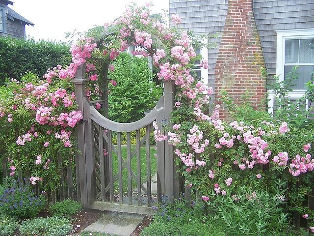 Rose Gate, Sconset