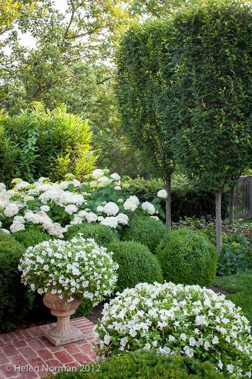 Tone on Tone: Our Garden in Southern Living This is a great blog post of a beaut...