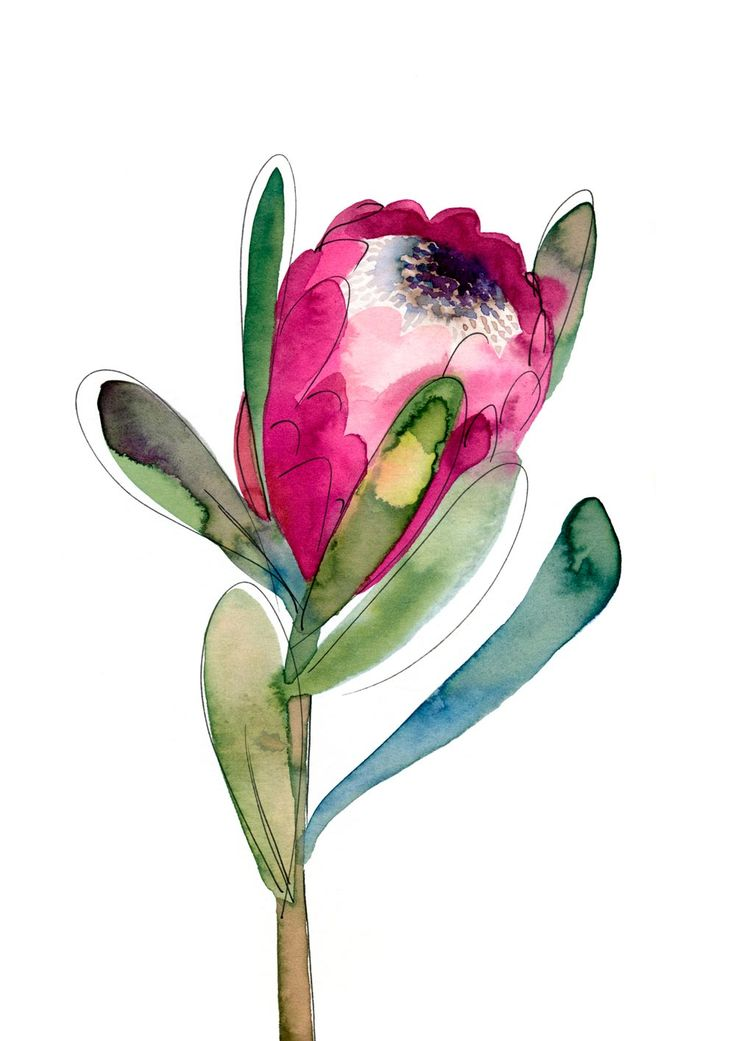 'Protea' by Natalie Martin