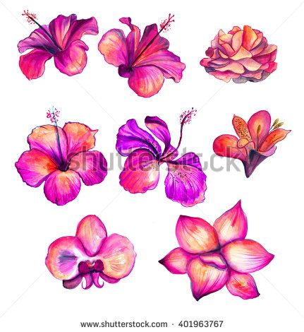 Bright red watercolor Hibiscus, rose, orchid, lily flowers collection, floral tr...