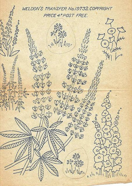 COLOUR IT, SEW IT, TRACE IT, ETC. LUPINS  Old Transfer From Grandma | Flickr - P...