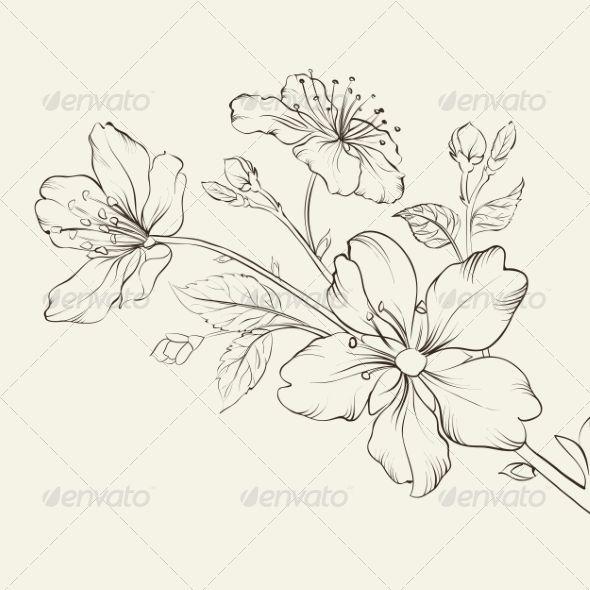 Cherry Blossom Flower Outline 44087 | DFILES