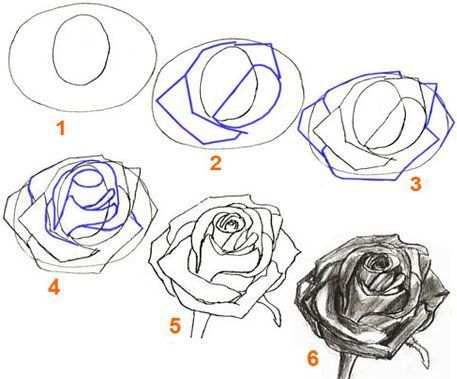 How To Draw A Petal | How to Draw a Rose, step by step | Pencil Drawing a Rose F...