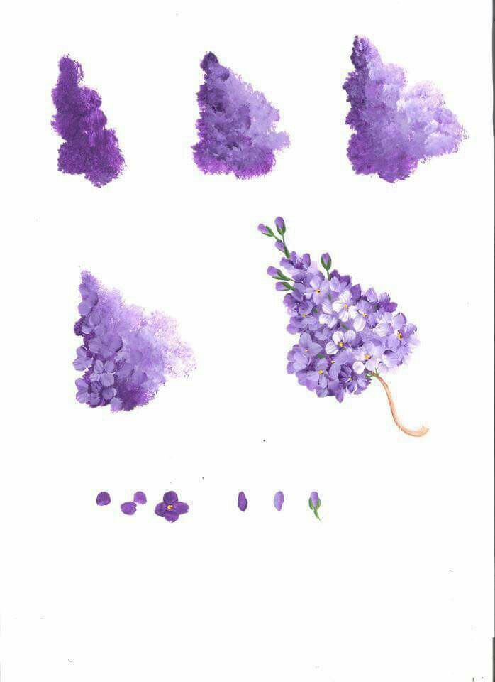 Step by step how to paint purple Lilac flowers.