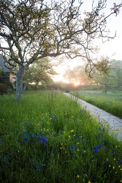 Great Dixter: England's plant rich, idea-filled garden displays a creative t...