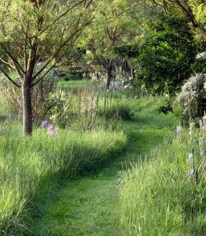 How to mow a path in your yard -- it'll look straight out of a storybook. by...