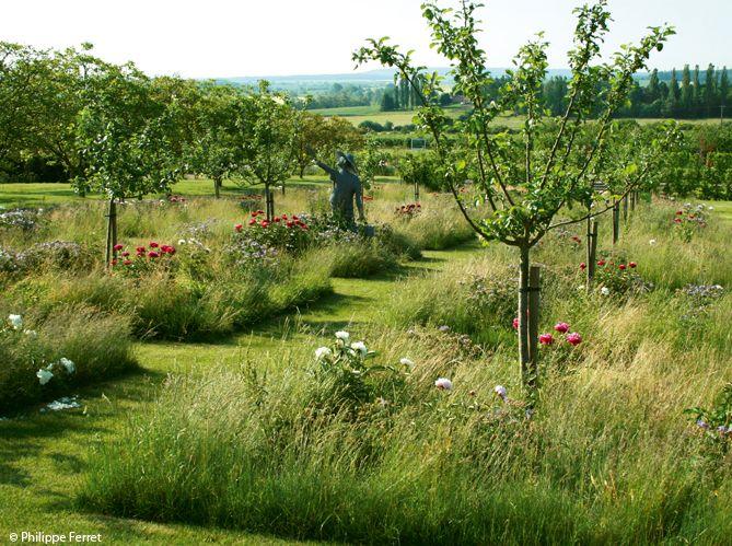 Prairie de vivaces et d'annuelles - Mon Jardin & ma maison