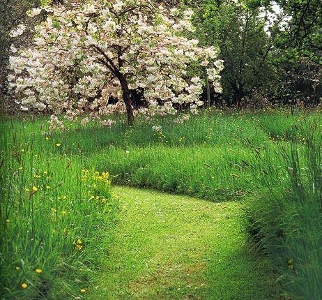 Sunshine and warmth = Time to get out the mower and have fun creating space. I l...