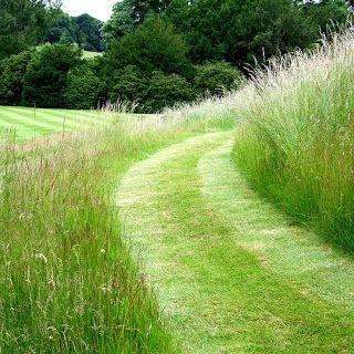 smell of fresh mown grass