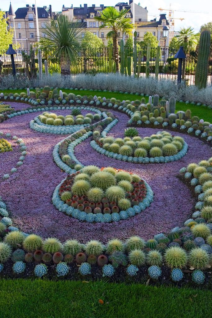 Cactus garden art...love the design. Could use any plants.  #flowers #landscapin...