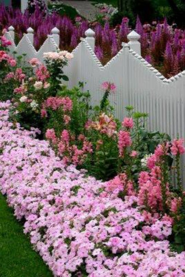 Pretty fence line