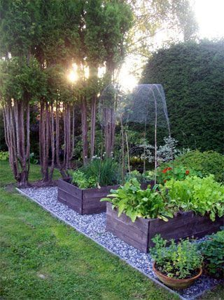 Flowers And Garden Ideas Small And Simple Backyard Garden With
