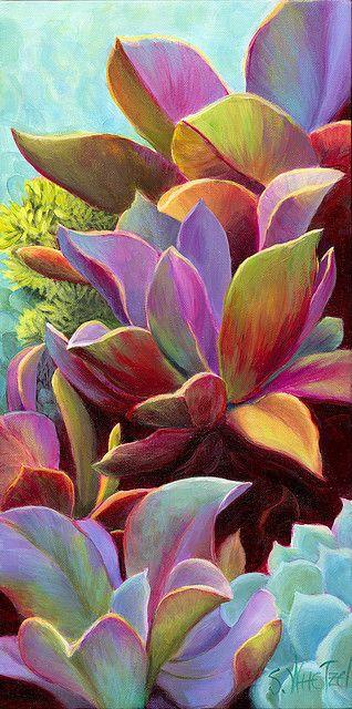 Rainbow Succulent