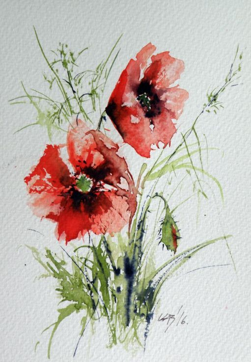 Buy Little poppy, Watercolour by Kovács Anna Brigitta on Artfinder. Discover th...