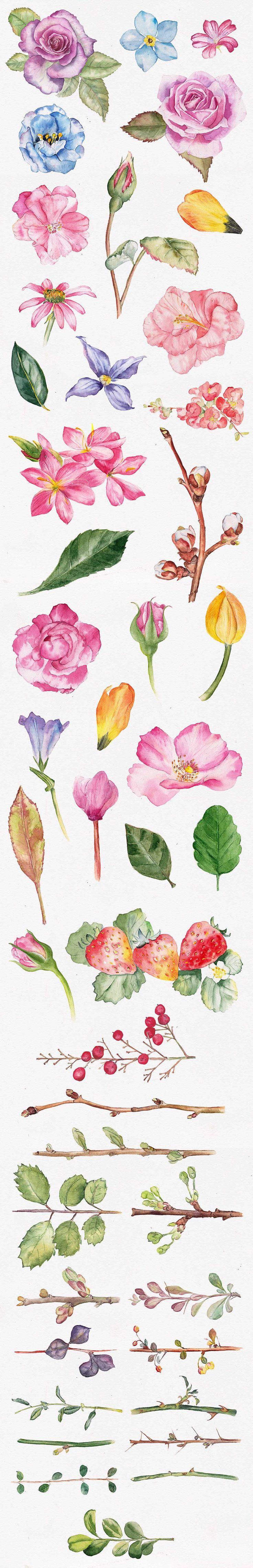 Custom Wreath Generator 2 + Flowers by emine on Creative Market