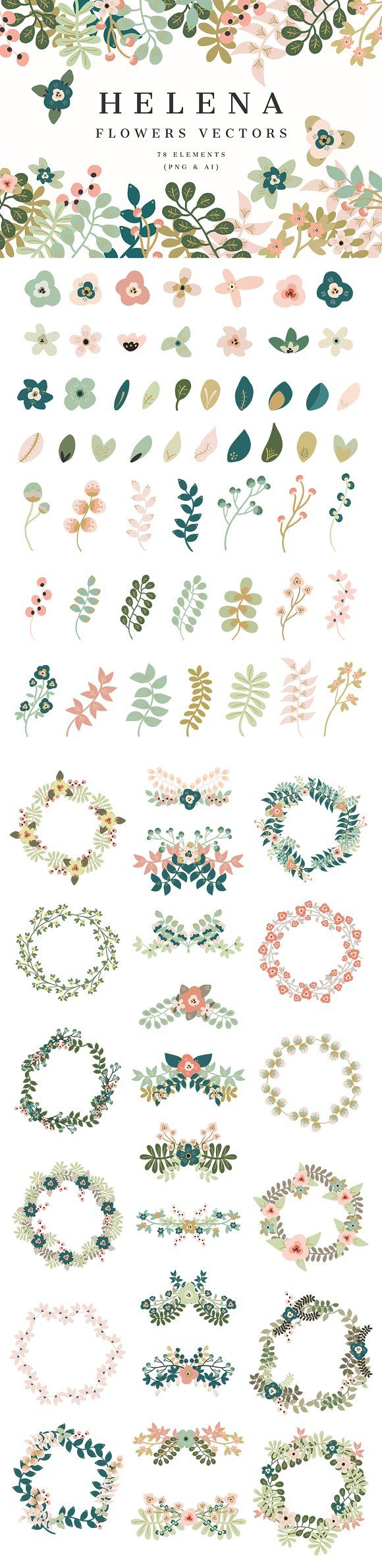 Helena -Flowers Vectors by Cliche Graphique on Creative Market