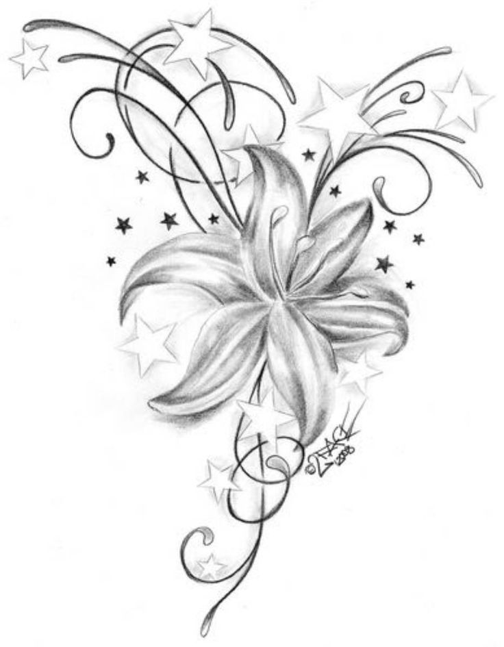 Flowers Drawings Inspiration :