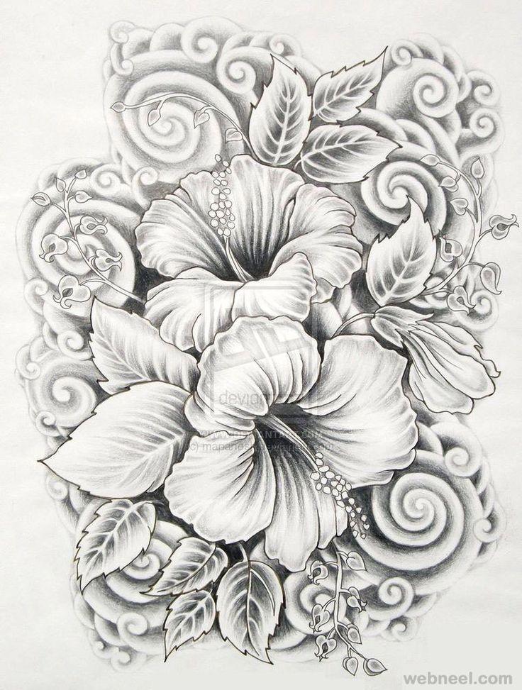 drawings of flowers hibiscus