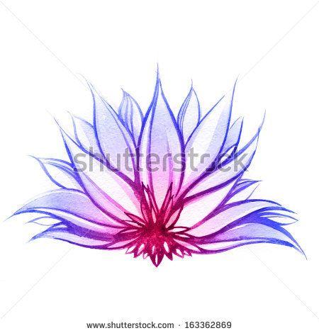 Flowers Drawings Lotus Flower Paintings Probably The Best Lotus