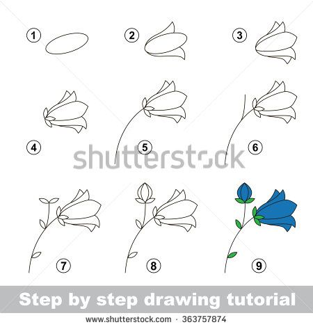 Flowers Drawings Inspiration Step By Step Drawing Tutorial Vector Kid Game How To Draw A Bluebell Flower Flowers Tn Leading Flowers Magazine Daily Beautiful Flowers For All Occasions