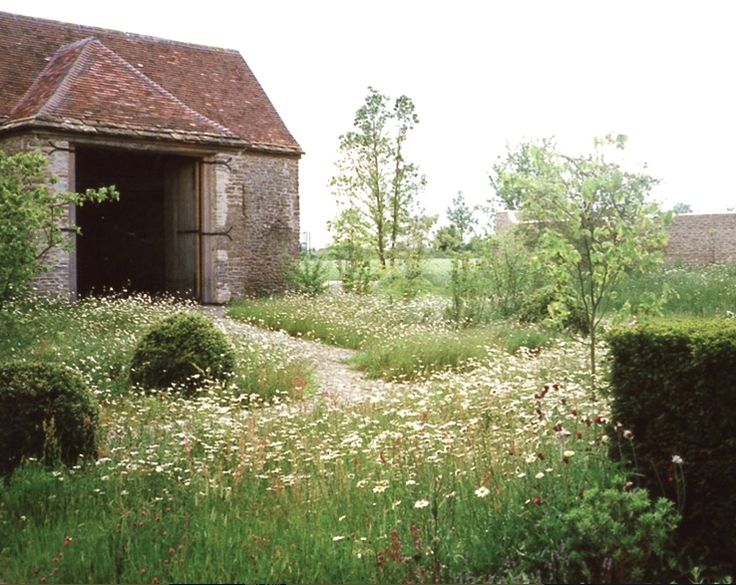 Wild Flowers Inspiration Here Are 10 Ideas To Steal From English