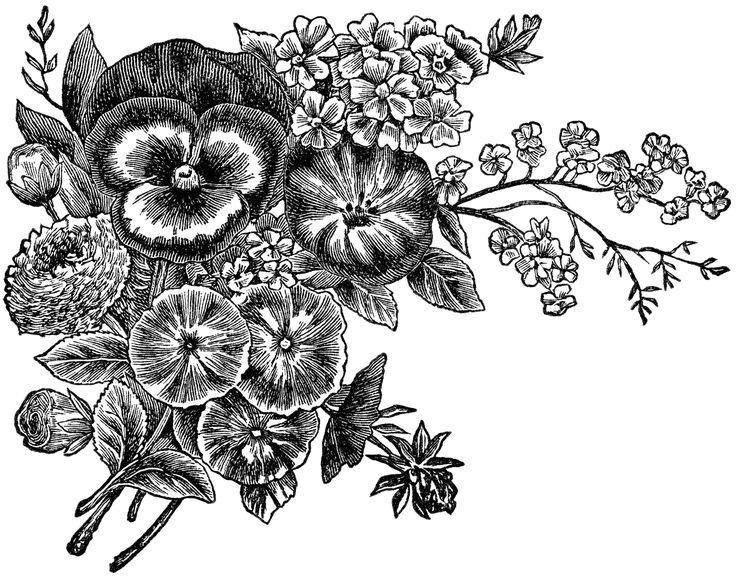 Flower Tattoos Free Vintage Image Flower Garden Seeds Magazine