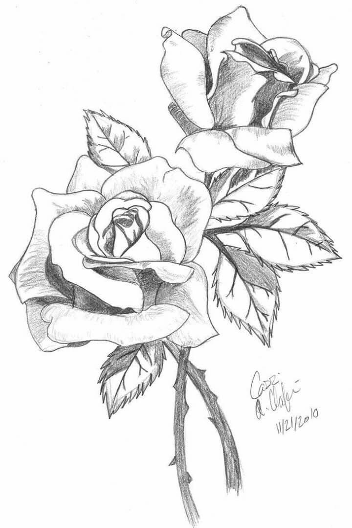 Flowers Drawings Inspiration More Pins Like This One At
