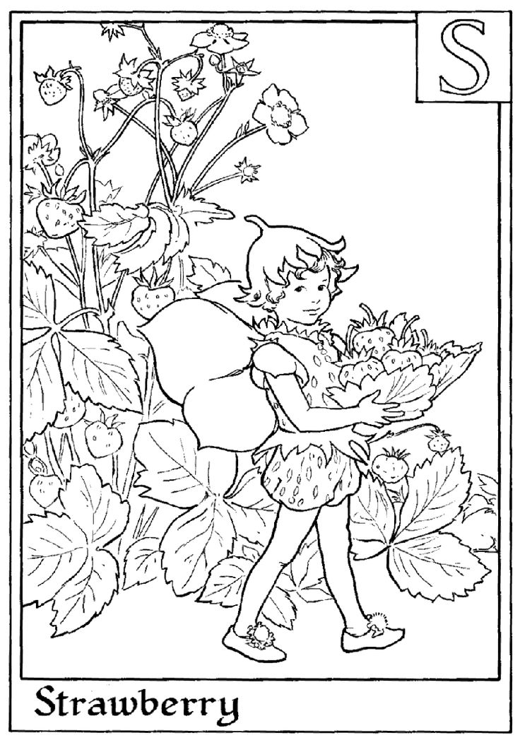 Fairy printable colouring page. S is for Strawberry.  This page is a bit smaller...