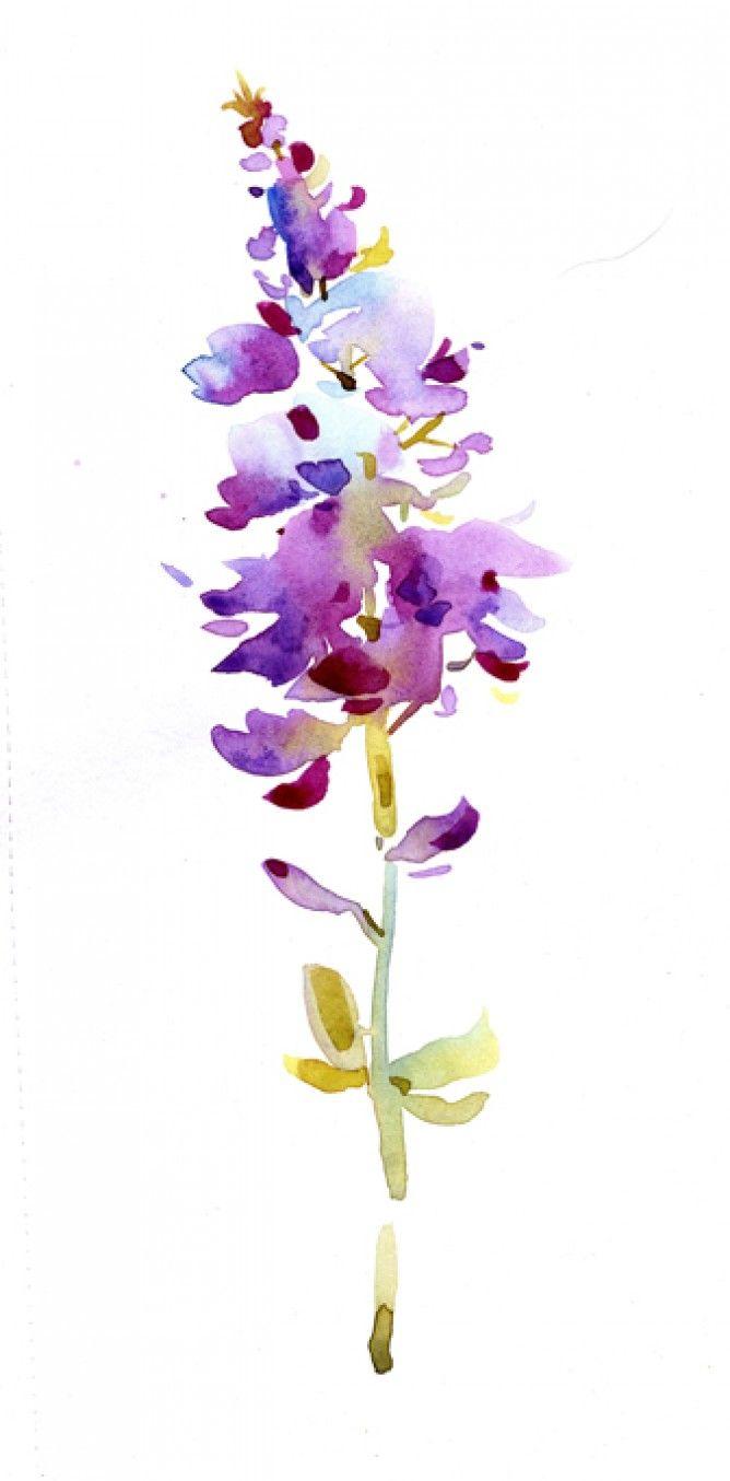 Natalie Graham - Watercolour flower - Artists & Illustrators - Original art for ...