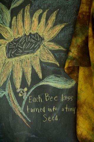 Waldorf ~ 5th grade ~ Botany ~ Sunflower ~ chalkboard drawing