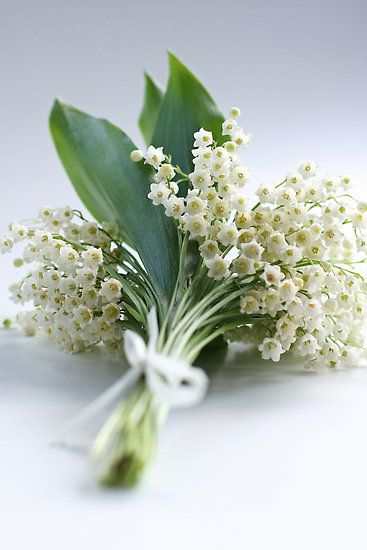 Weddings Flower Arrangements Lily Of The Valley Nose