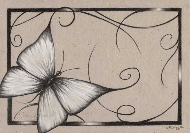 butterflies drawings | Zindy-Zone.dk - Coloured Paper Drawings - Butterfly of Au...