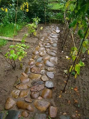 Work a bag of dry concrete mix into the soil where stone is to sit, lay stone, w...