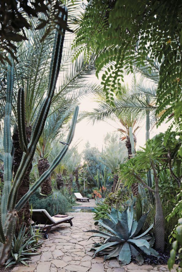 Flowers And Garden Ideas Magical Moroccan Garden Flowers Tn
