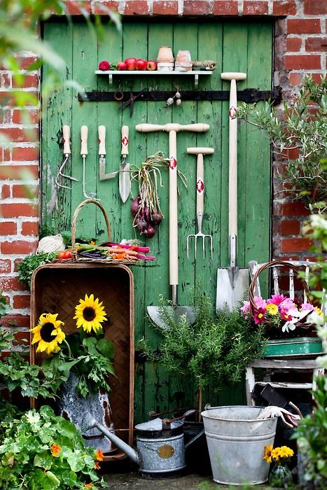 organized outdoor tools