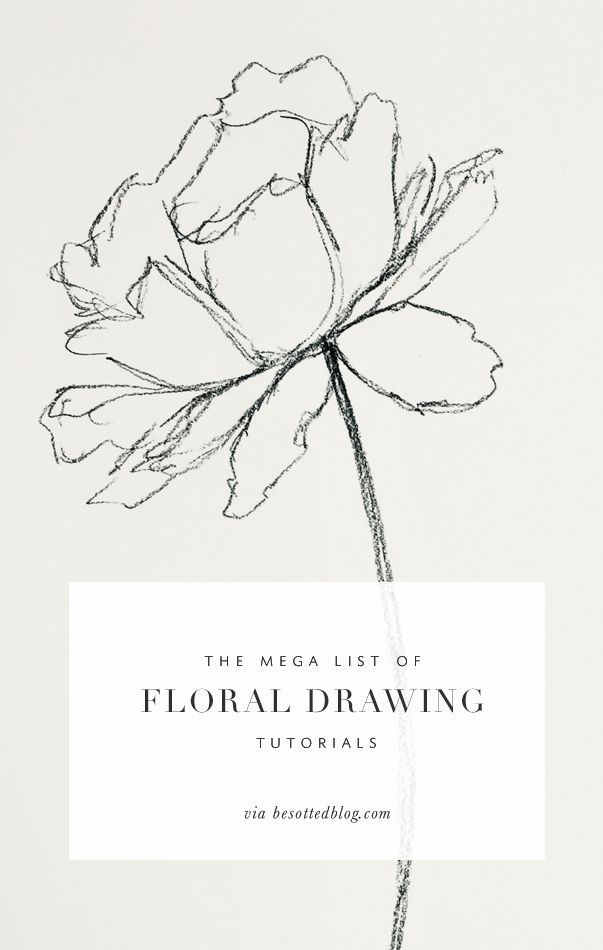 A mega list of floral drawing tutorials over 50+ resources for supplies, tutoria...