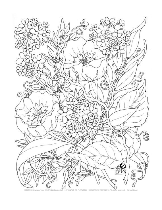 Adult Coloring Pages  -A Tangle of Flowers, Set of 8