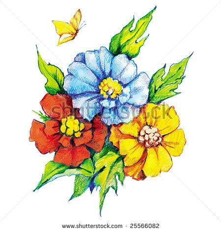 Drawings Of Flowers And Butterflies   Beautiful Flowers And Butterfly. Colored P...