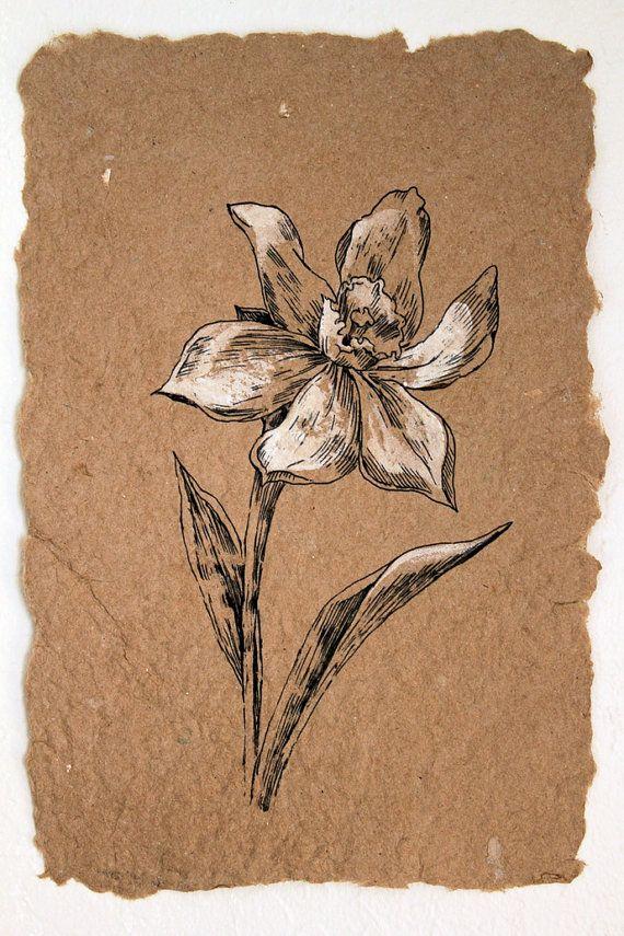 Flower Drawing. White Narcissus. Classis Style Original Artwork. Botanical Art. ...