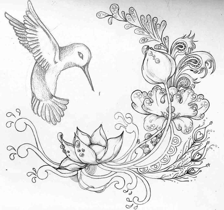 Flower Sketch  - Dr. Odd