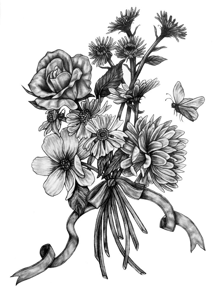 Original Flowers and Butterfly Pencil Drawing Pollinators 2