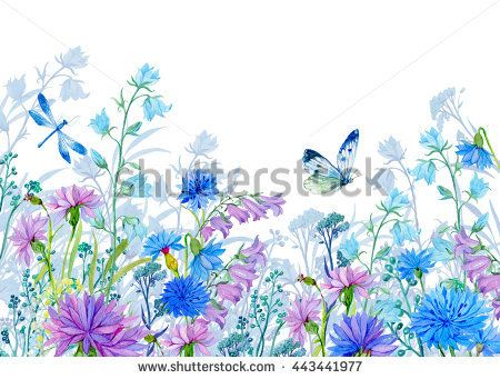 background of flowers.watercolor illustration.Wildflowers and butterflies. desig...