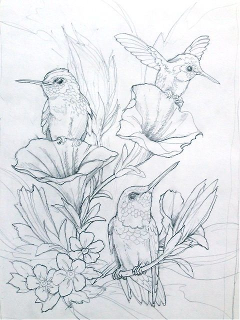 - Flowers Drawings Inspiration : Humming Bird Flower Coloring Pages Colouring  Adult Detailed Advanced Printable K... - Flowers.tn - Leading Flowers  Magazine, Daily Beautiful Flowers For All Occasions