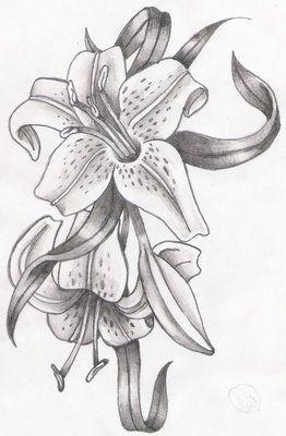 pencil drawings of flowers - Поиск в Google