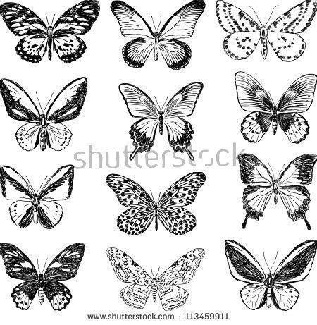 Resultado de imagen de Drawings of Flowers and Butterflies