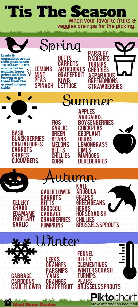 Eat seasonally by following this awesome infographic: #zerohunger  Via marelee