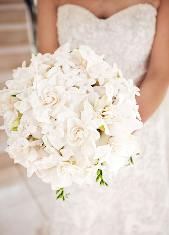 Long lasting and budget friendly, this is one flower that makes a fabulous choic...