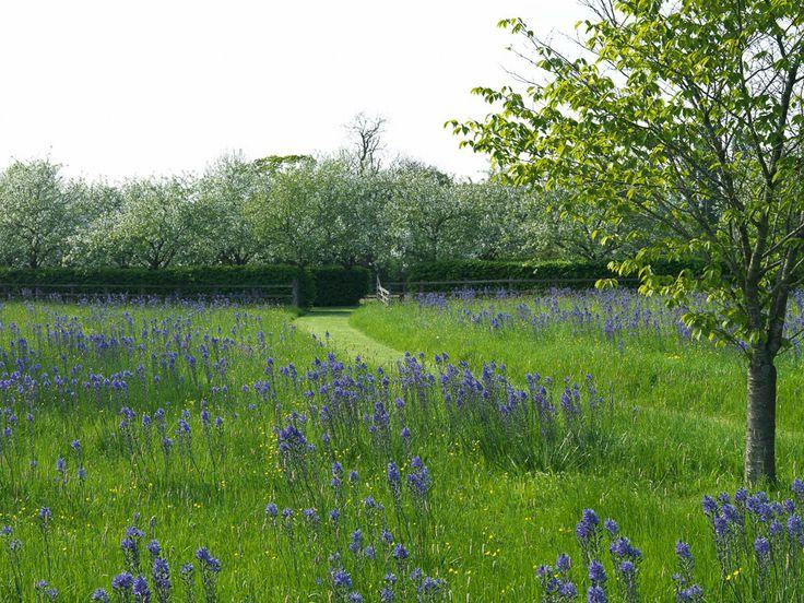 Landscape Focused: landscape, garden design ideas — Holt Organic Farm by Sarah...