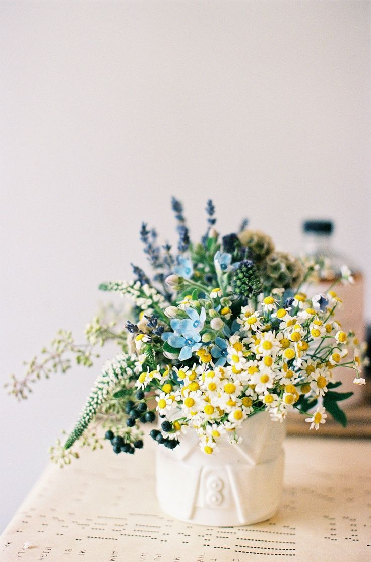 Daisies berries and lavender - a little too much blue, probably not controlled e...